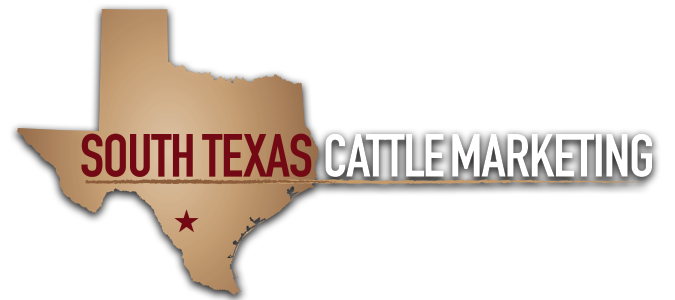 South Texas Cattle Marketing